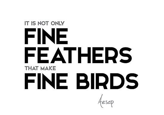 fine feathers, fine birds - aesop by razvandrc