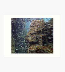 Shoaling anchovies Art Print