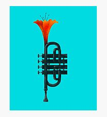 Trumpet Flower Photographic Print