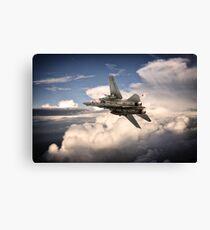 Tomcat VF-102 Canvas Print