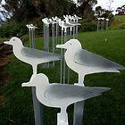 Seagulls,Sculpture Bermagui,Australia 2017 by muz2142
