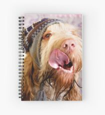 Orange and White Italian Spinone Dog Head Shot with Hat Spiral Notebook