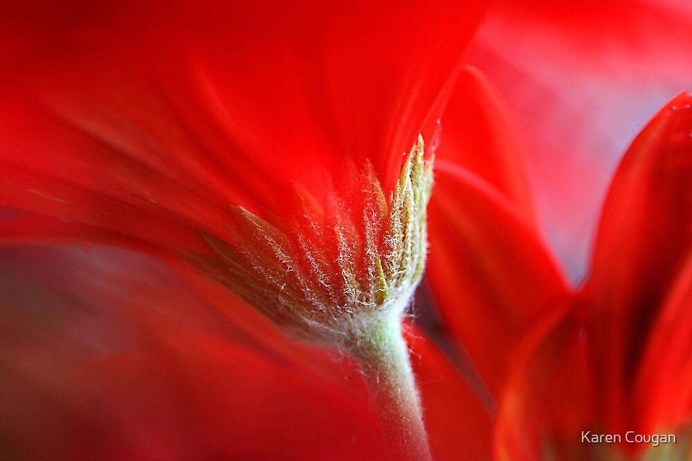 Red See by Karen Cougan