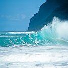 Polihale Beach Kauai by kevin smith  skystudiohawaii