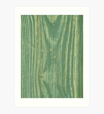 Rustic green weathered wood texture Art Print