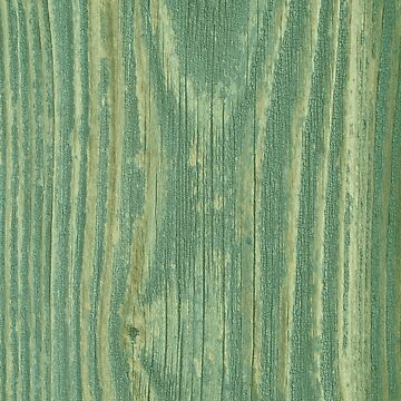 Rustic green weathered wood texture by chihuahuashower