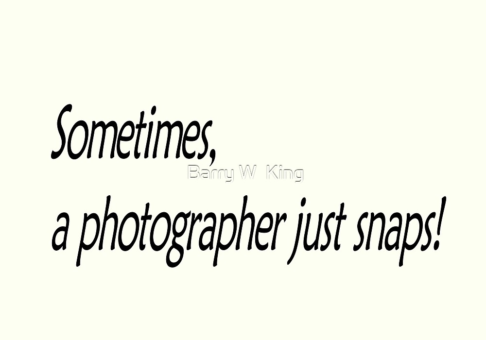 Sometimes, a photographer just snaps! by Barry W  King