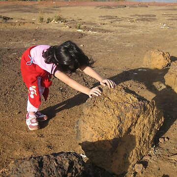 The Impossible Dream - Pushing a Rock by SheriarIrani