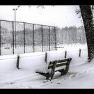 Snowy Bench by Anteia