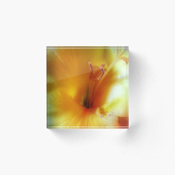 Flower 2 Acrylic Block