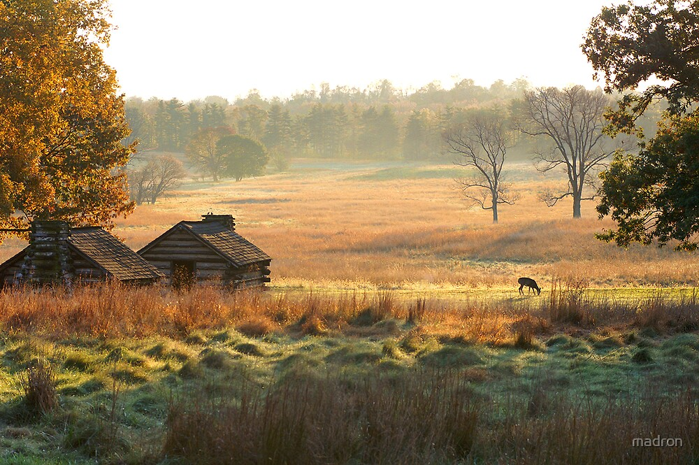 Valley Forge Fall Morning by madron