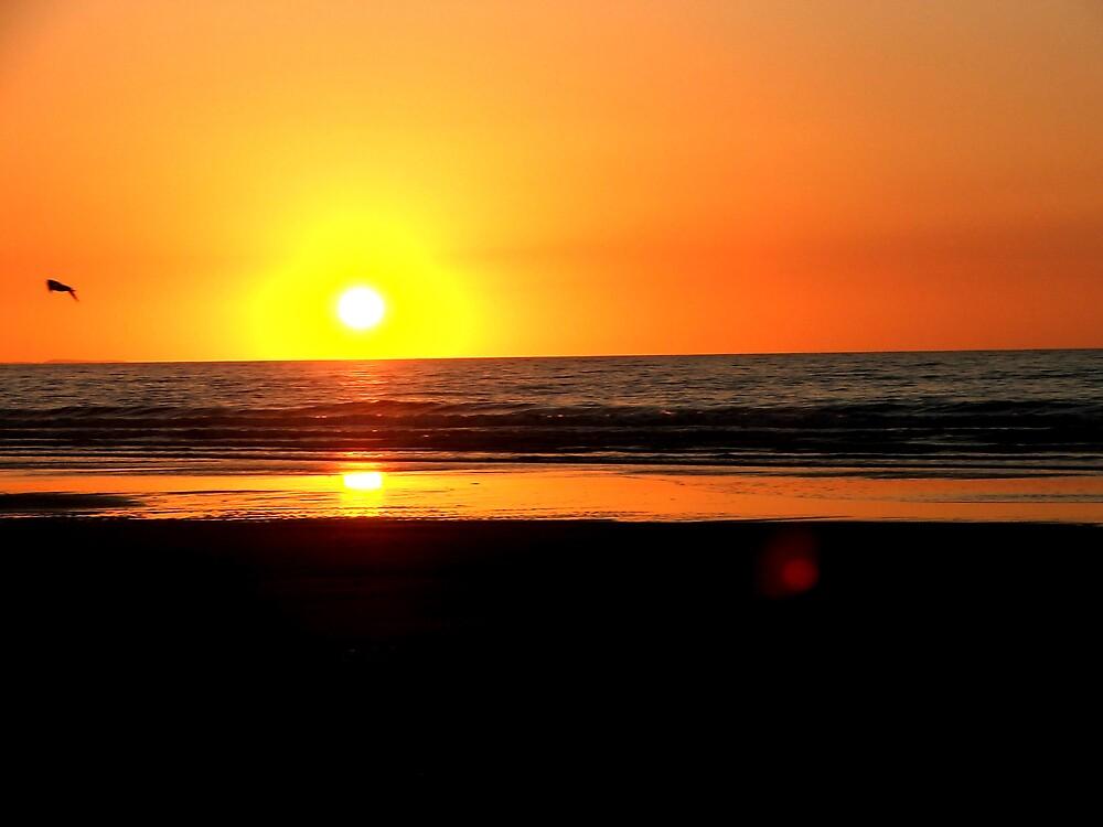 WEST COAST SUN SET NEW ZEALAND by lifesaboar