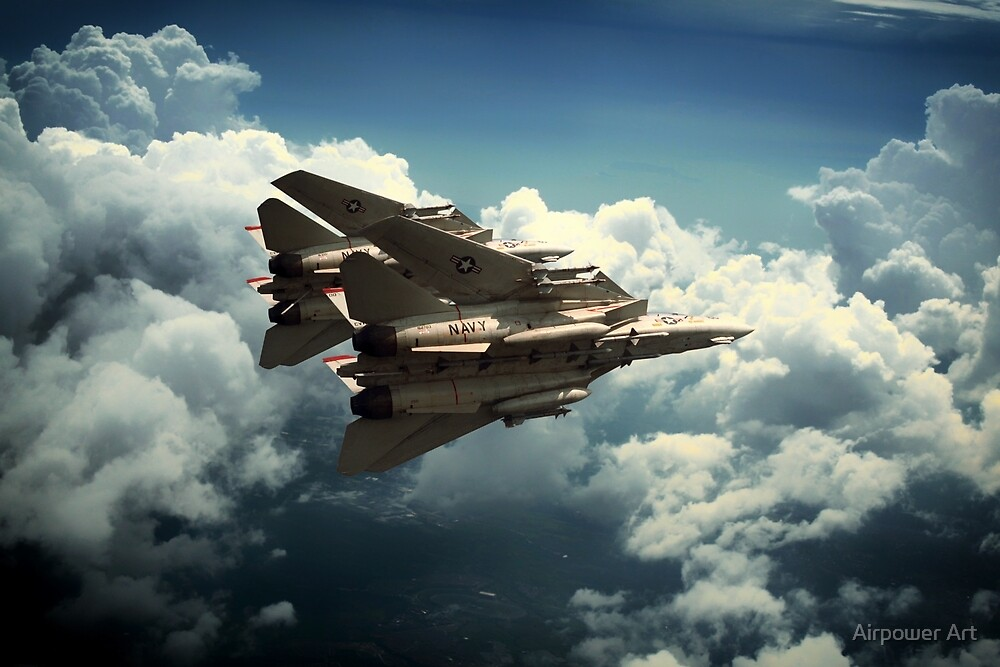 Tomcat Prowlers by Airpower Art