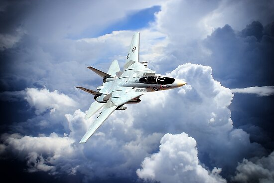 The Tomcat by Airpower Art