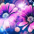 Morning flowers by Mikko Tyllinen