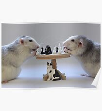 The real Chess Players :) Poster