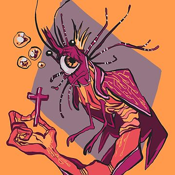 shrimp angel by neap
