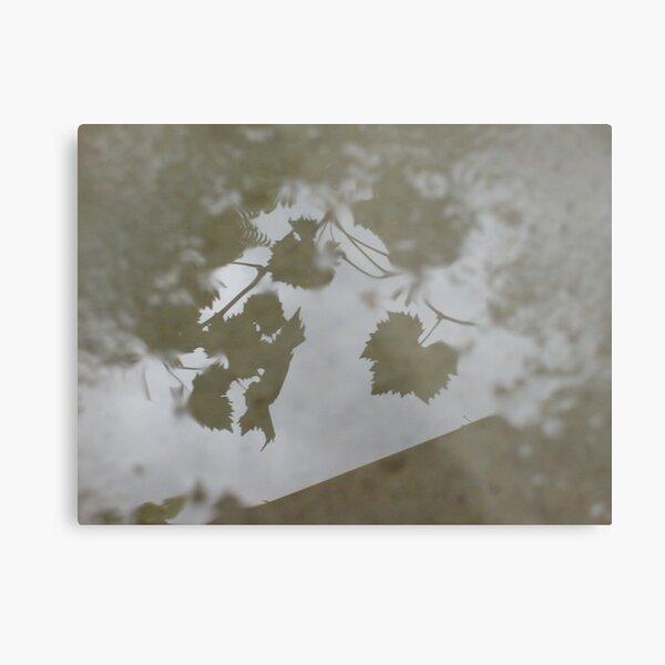 Rainy Day`s Metal Print