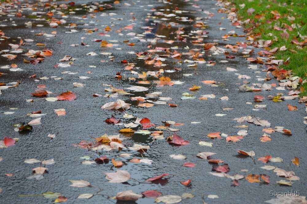 Rainy Fall Day by Susanh45