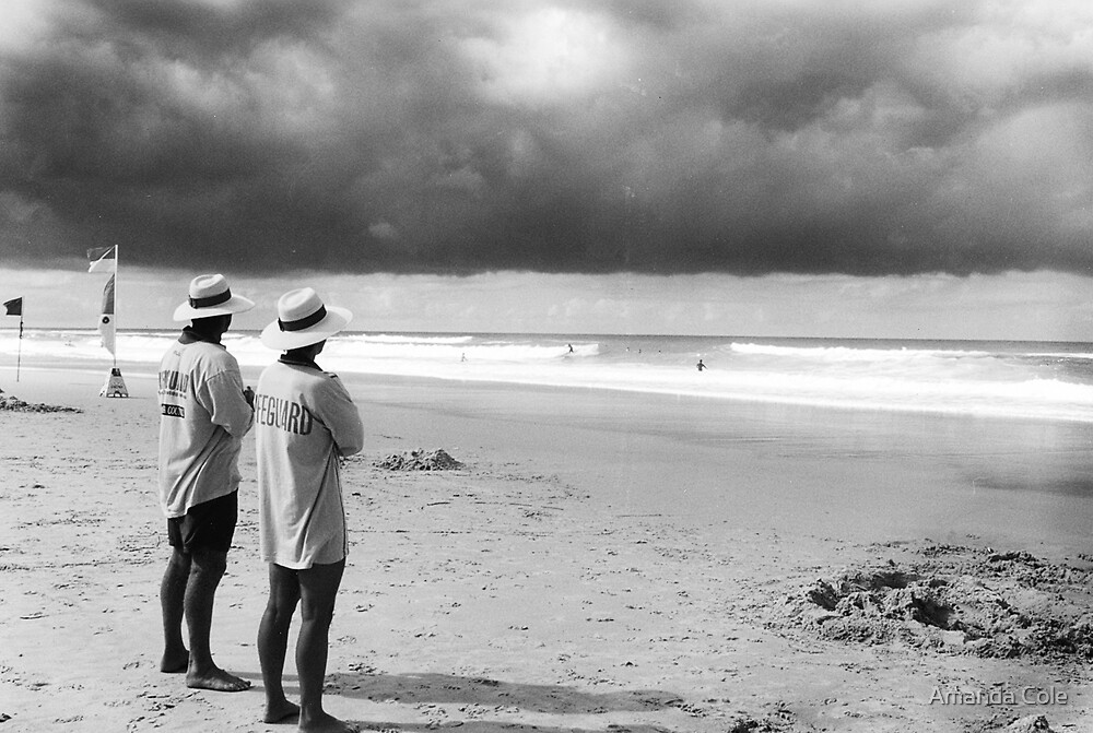 life Guards by Amanda Cole
