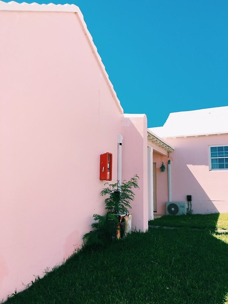Pink House by Jay Stonefield