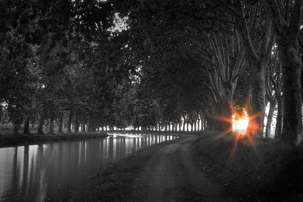 Sunrise Canal du Midi by jephoto