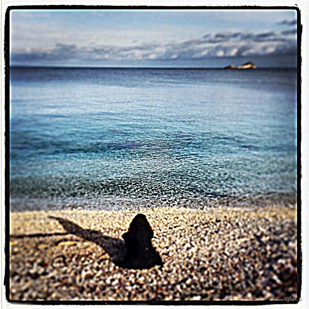 Le ghiaie beach - Elba - Italy by gluca