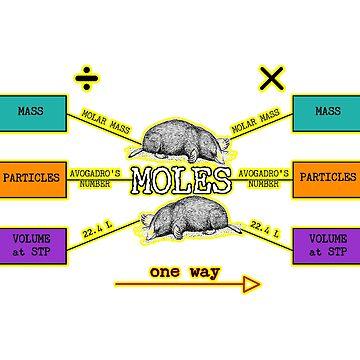 Mole Conversions in Chemistry by peaceofpistudio