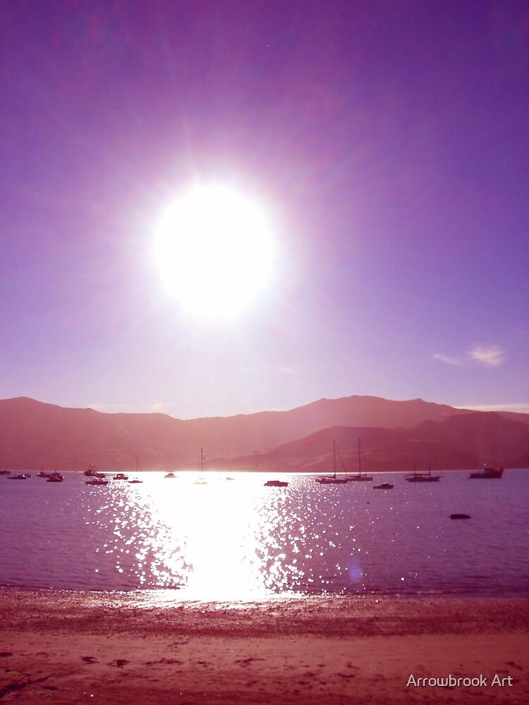 Akaroa Harbour NZ by John Brotheridge