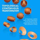 Topological Continuous Transformation by Gianni A. Sarcone
