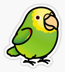 Chubby Yellow-headed Amazon Sticker