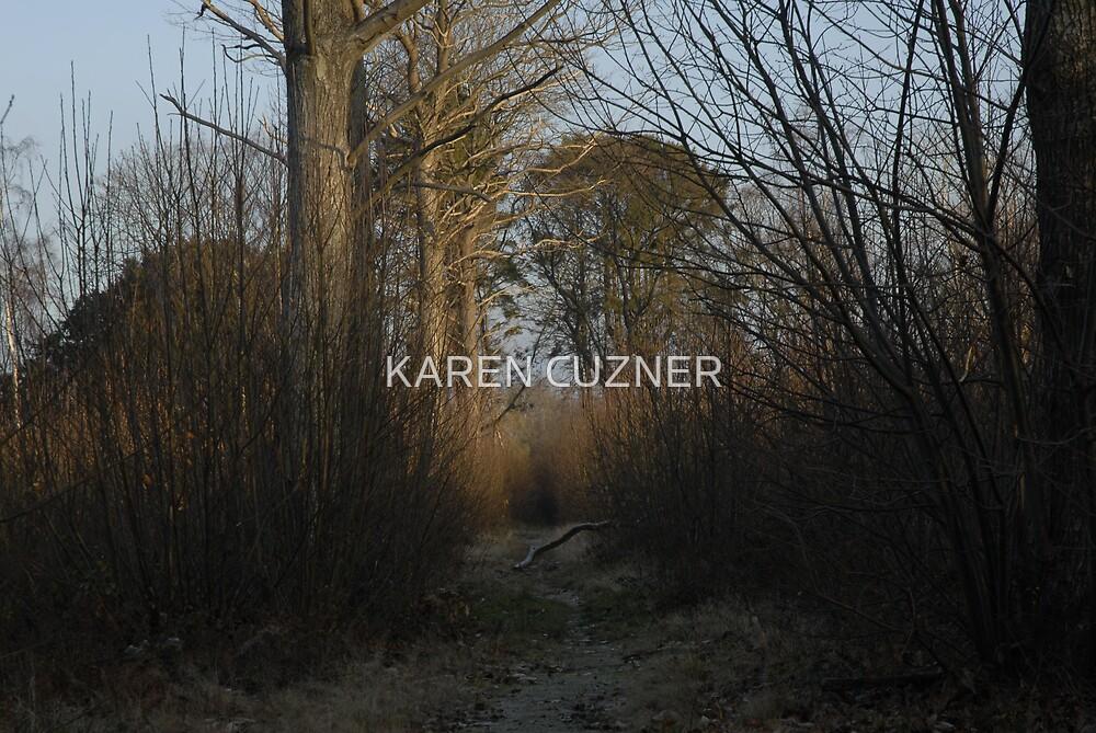 forest walk by KAREN CUZNER