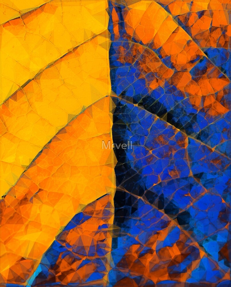 closeup leaf texture geometric triangle abstract pattern in blue orange yellow by Mrvell
