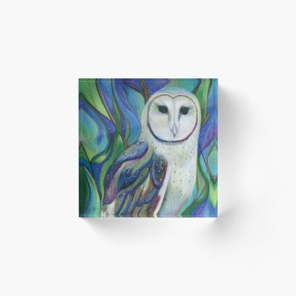 Barn Owl in a Fantasy Forest Acrylic Block