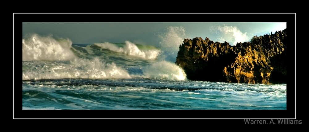 Wild Sea by Warren. A. Williams