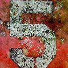 NUMBER FIVE by Krista Droop