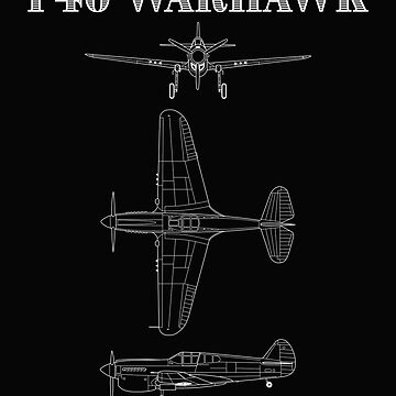 P40 Warhawk Fighter Aircraft  by kudostees