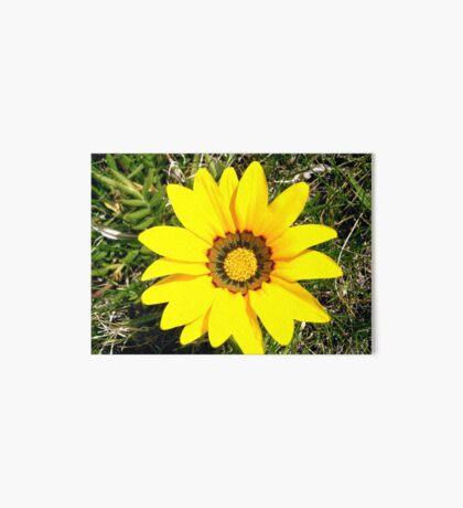 Yellow flower Art Board