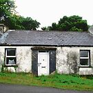 Abandoned cottage, Donegal, Ireland by Shulie1