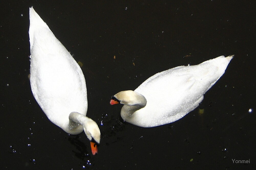 Two mute swans by Yonmei