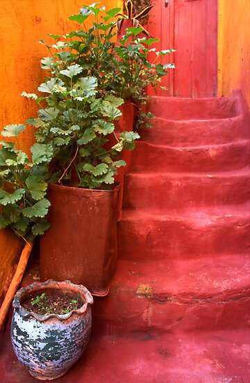 Blue Vase, Red Steps. Chania Old Town. Western Crete,Greece. by Steve Outram