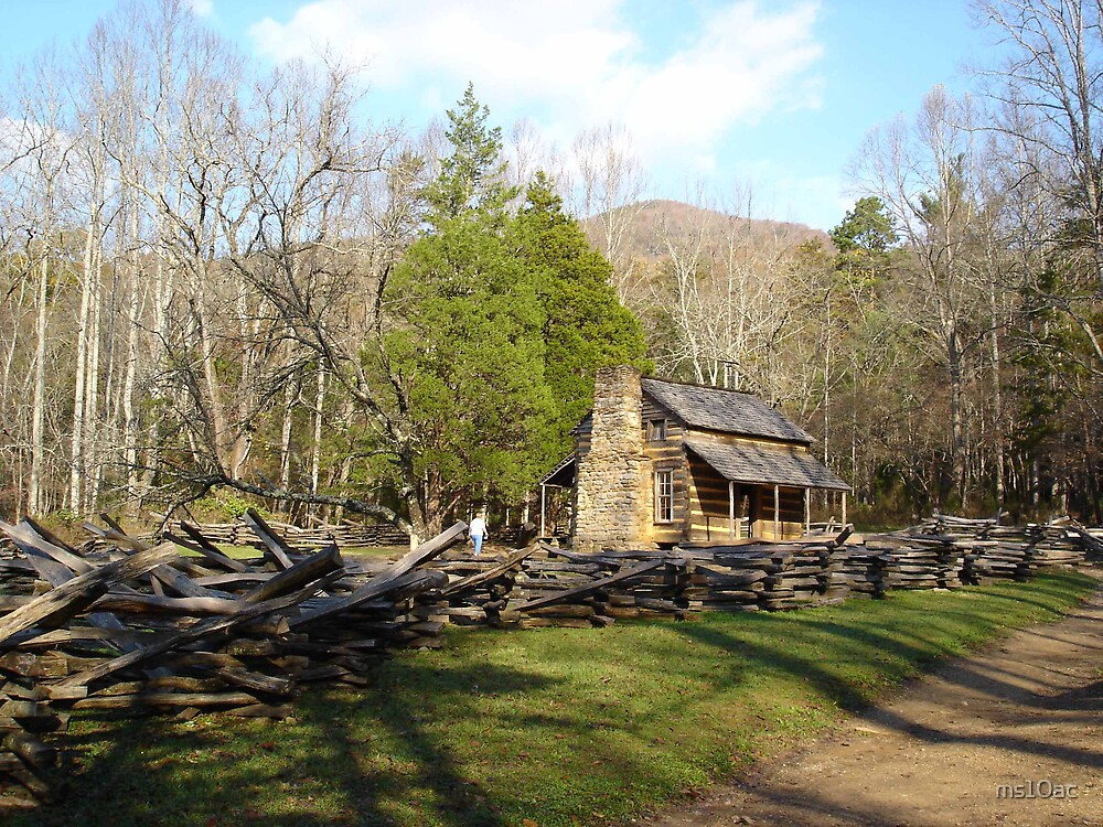 Cades Cove Cabin by ms10ac