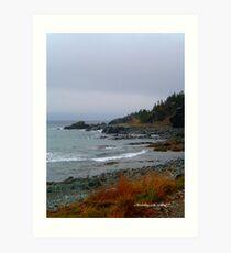 Kings Cove, Newfoundland Art Print