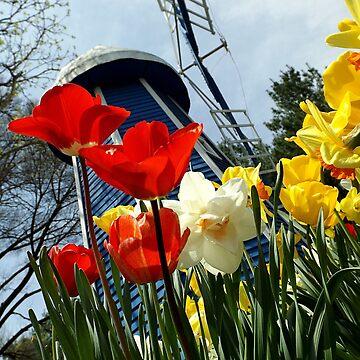 Spring wind in the gardens by jammingene
