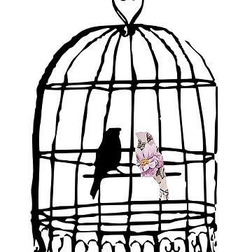 Floral Birdcage  by thecatswhisper
