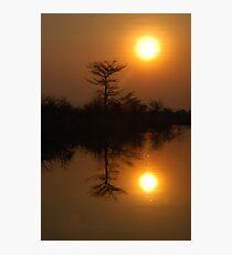 Okavango sunset Photographic Print