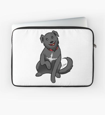 Lab Mix Laptop Sleeve