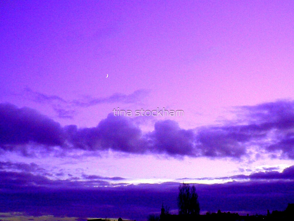 purple haze by tina stockham