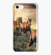 High Desert Thunder iPhone Case/Skin