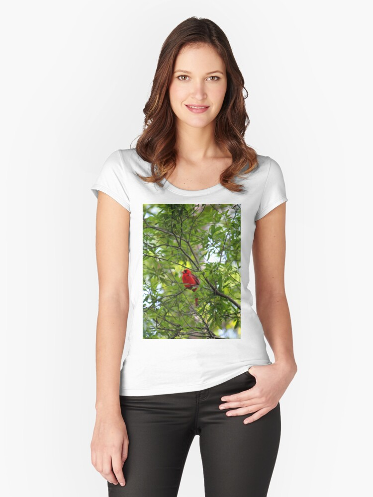 Perched Cardinal Women's Fitted Scoop T-Shirt Front